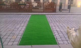 Travní koberec v Kutné Hoře